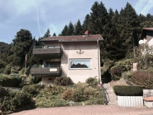 Bild: Haus Panoramablick im Oberharz mit 50.000er Internet